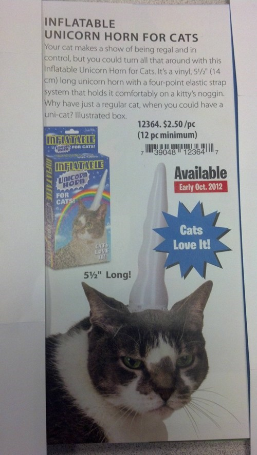 Cats,horns,products,silly,unicorn horn,unicorns,wtf