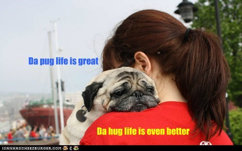 Da pug life is great Da hug life is even better