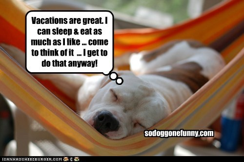 Vacations are great. I can sleep & eat as much as I like ... come to think of it ... I get to do that anyway! sodoggonefunny,com