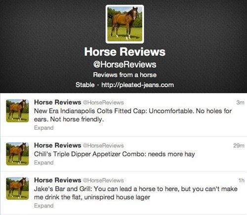 horse reviews,pleated jeans,twitter