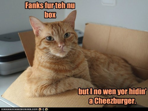Cheezburger Image 6599804160