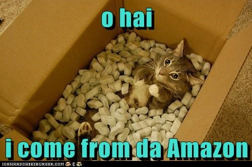 Funny cat meme of a cat that jumped in an Amazon box full as if she was the package.