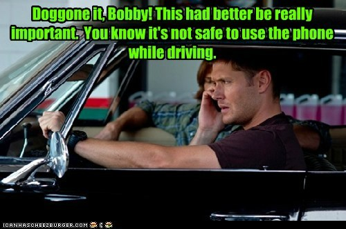 Doggone it, Bobby! This had better be really important. You know it's not safe to use the phone while driving.