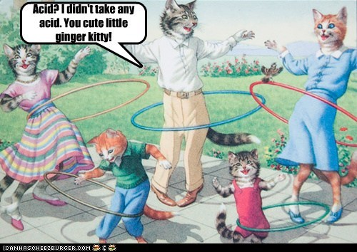 Cats,hula hoops,drugs,high,family