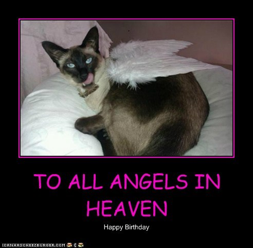 TO ALL ANGELS IN HEAVEN Happy Birthday