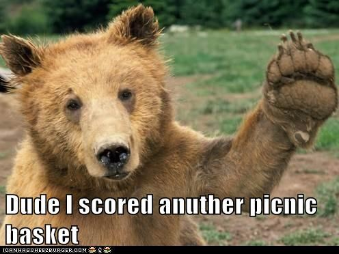 dude,score,picnic basket,bear,yogi,bro,high five