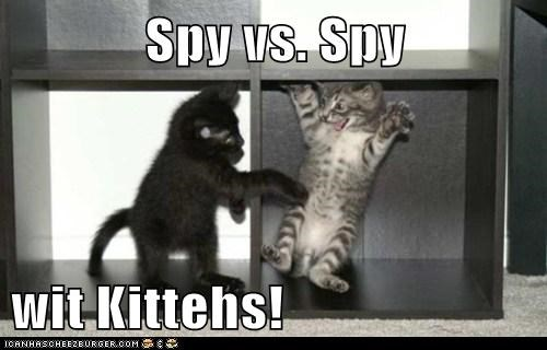Spy vs. Spy  wit Kittehs!