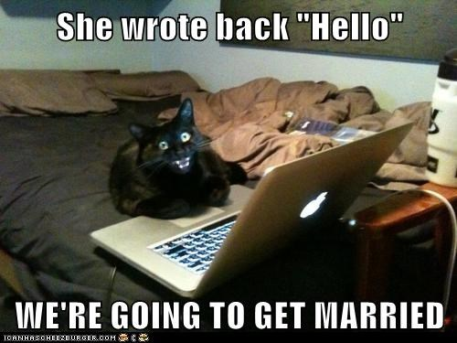 captions Cats dating dating site excited hello internet laptop married