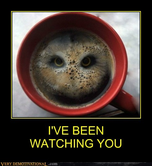 coffee cup Owl wtf - 6601954048