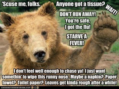 I don't feel well enough to chase ya! I just want somethin' to wipe this runny nose. Maybe a napkin? Paper towel? Toilet paper? Leaves get kinda rough after a while! DON'T RUN AWAY! You're safe, I got the flu! STARVE A FEVER! Anyone got a tissue? WAIT! 'Scuse me, folks.