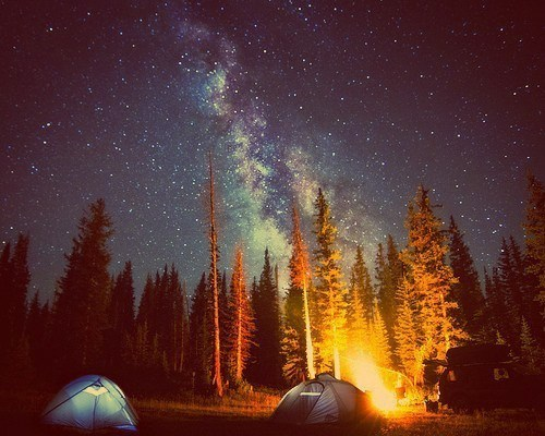 campfire,camping,landscape,stars