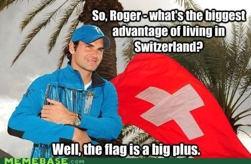 flag plus puns Sweden Switzerland - 6602790656