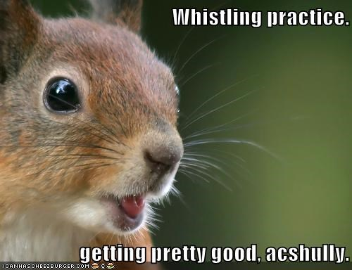 Whistling practice. getting pretty good, acshully.