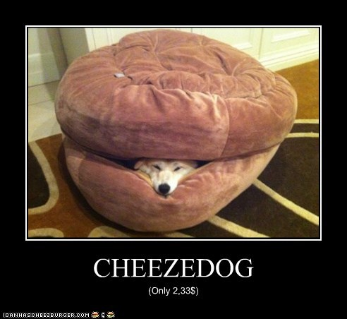 Cheezburger Image 6604051200