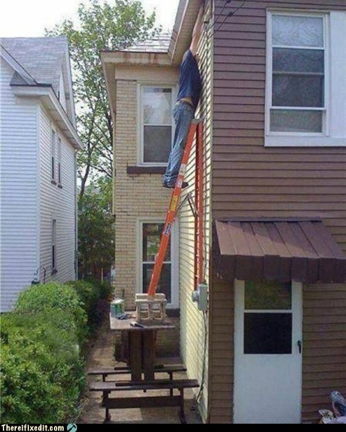 completely safe,house painting,ladder,painting,precarious