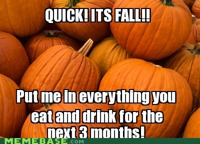 classic,drinks,fall,food,pumpkins