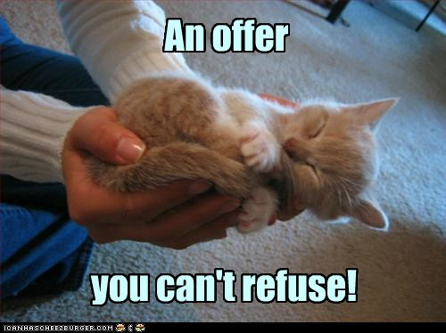 an-offer-you-cant-refuse captions Cats godfather Movie offer quote reference - 6605109248