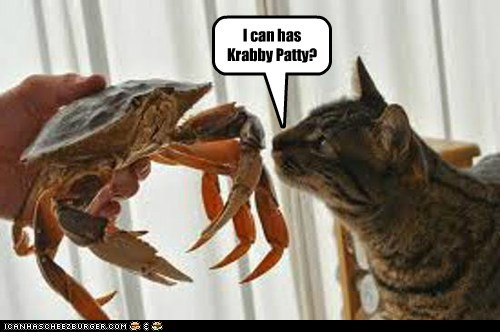I can has Krabby Patty?