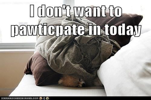 I don't want to pawticpate in today