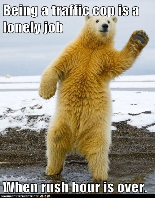 polar bear,job,traffic cop,lonely,rush hour,waving