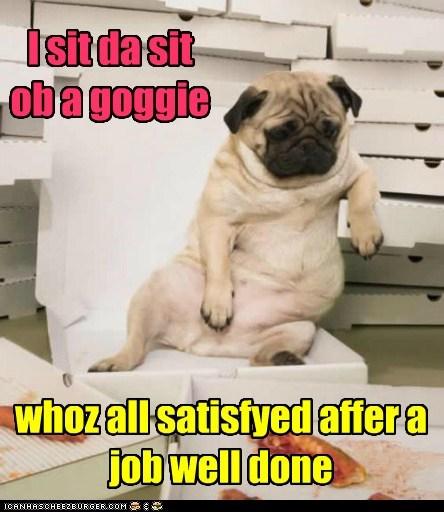 I sit da sit ob a goggie whoz all satisfyed affer a job well done
