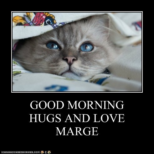 Good Morning Hugs And Love Marge Lolcats Lol Cat Memes Funny