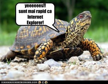 yeeeeees!! sunt mai rapid ca Internet Explorer!