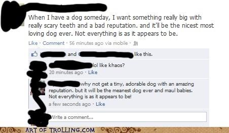 appearances dogs facebook - 6607756800