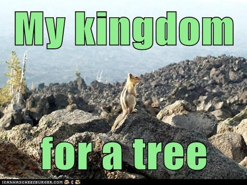 My kingdom for a tree
