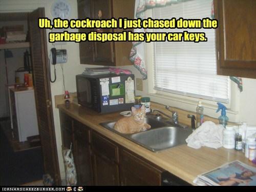 Cheezburger Image 6609811712
