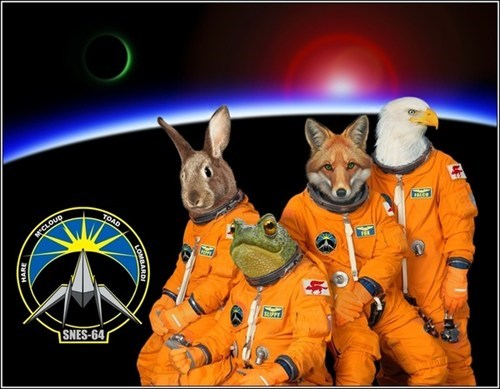animals haters gonna hate lylat Star Fox - 6610068224