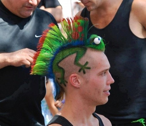 hair,lizard,mohawk