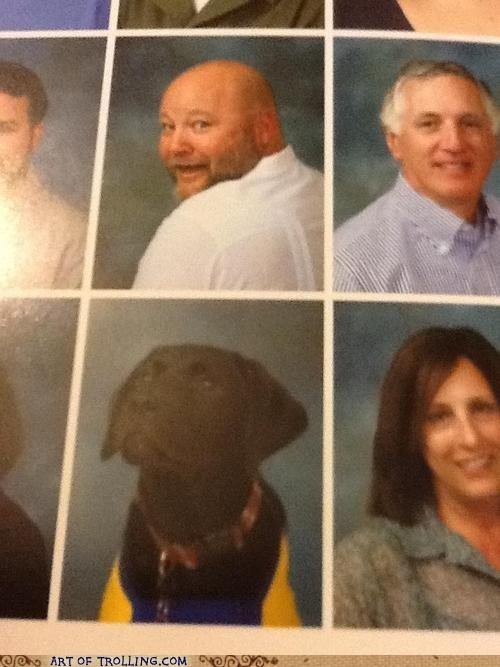 dogs IRL yearbook - 6610551552
