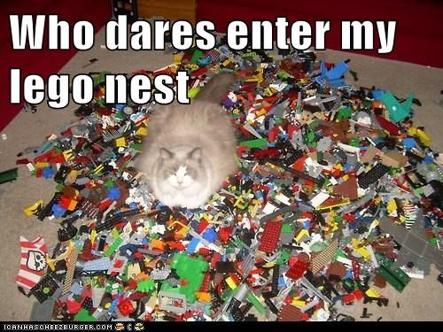 lego,nest,toys,Cats,captions