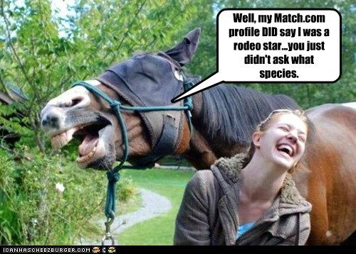 laughing,horse,dating,Match.com,rodeo,star,species,wrong