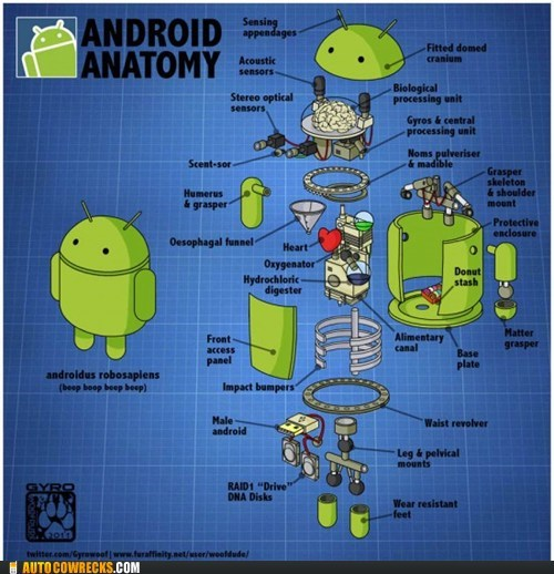 anatomy android robots - 6610953984