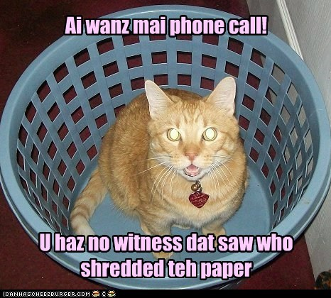 Ai wanz mai phone call! U haz no witness dat saw who shredded teh paper