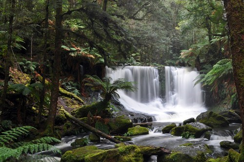Horseshoe Falls in Tasmania