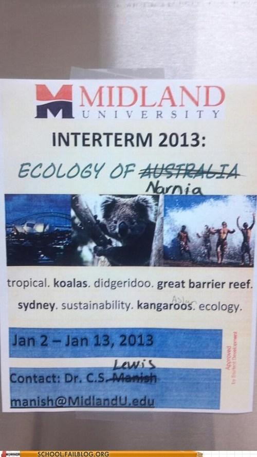 australia,ecology,koala,midland university,narnia