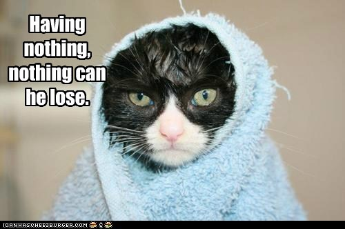 captions,Cats,henry vi,lose,nothing,quote,rugged,shakespeare