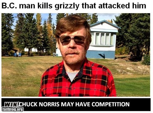 BAMF,bear,chuck norris,news,Probably bad News