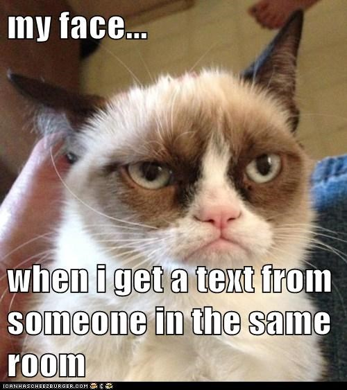 captions,Cats,cell phone,frown,Grumpy Cat,social,text