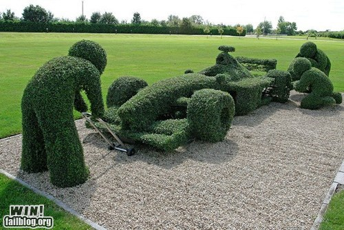 hedge trim design cars - 6612711936