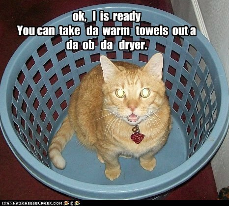 dryer laundry hamper Cats captions