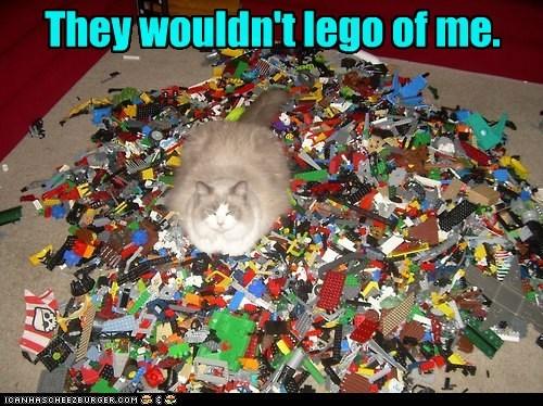 Cheezburger Image 6613254144