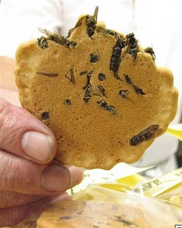bees cookies food gross wasps - 6613406976