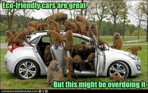 monkey eco friendly overdoing it car - 6613524480
