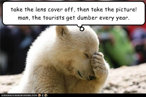 polar bear lens cover facepalm not that hard tourists picture zoo - 6613793280