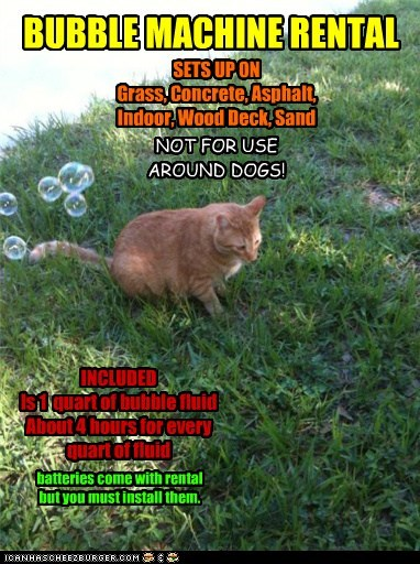 BUBBLE MACHINE RENTAL SETS UP ON Grass, Concrete, Asphalt, Indoor, Wood Deck, Sand INCLUDED Is 1 quart of bubble fluid About 4 hours for every quart of fluid NOT FOR USE AROUND DOGS! batteries come with rental but you must install them.