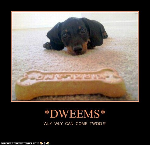 Cheezburger Image 6614567168